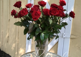 Single red rose gift rose funeral Minnesota